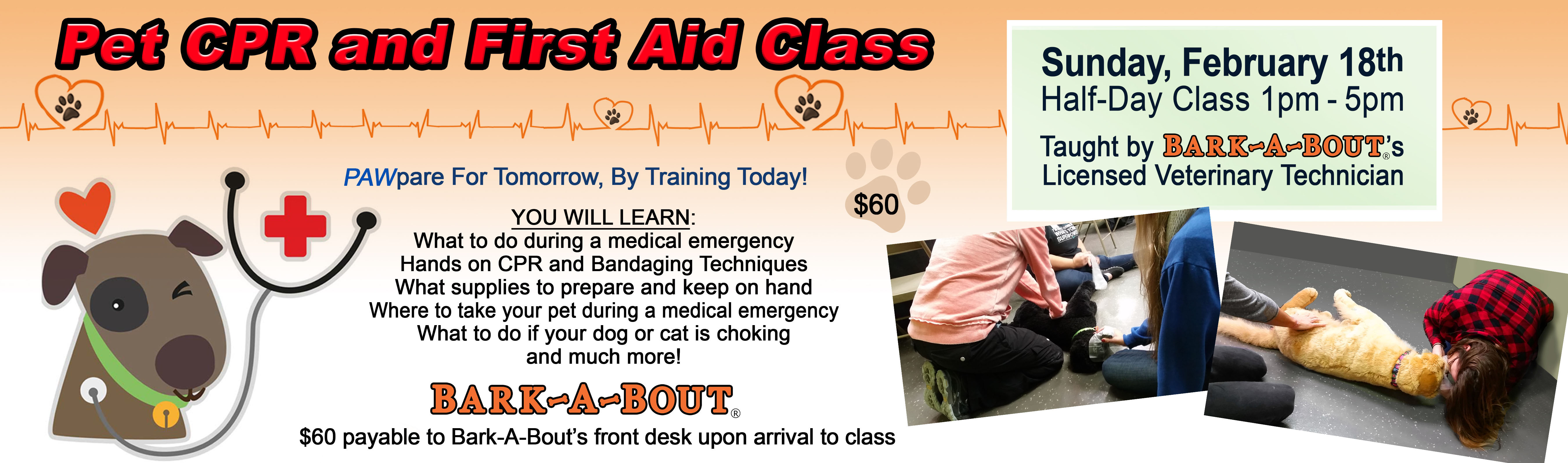 Bark A Bout Pet Cpr And First Aid