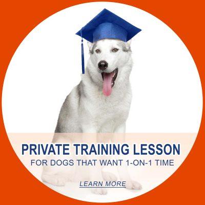 Private Training LESSON